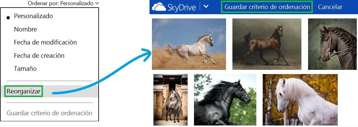 Reorganizar archivos en SkyDrive